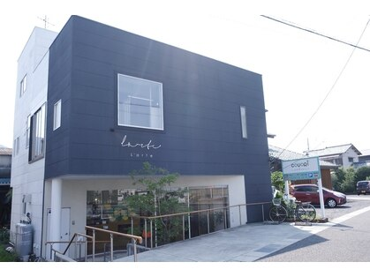 コヨリ(Coyori)の写真