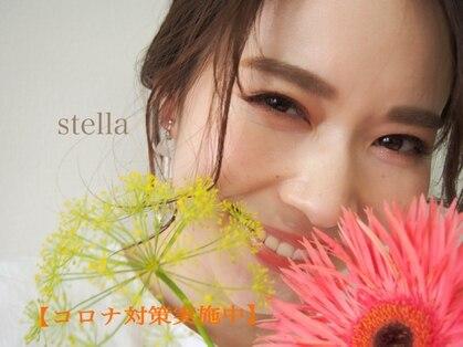 ステラ(stella)の写真