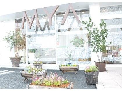 マヤ 昭和店(MYA)の写真
