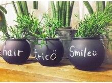 トリコ(trico)の雰囲気(店内には沢山のグリーンが♪マイナスイオンたっぷりです☆)