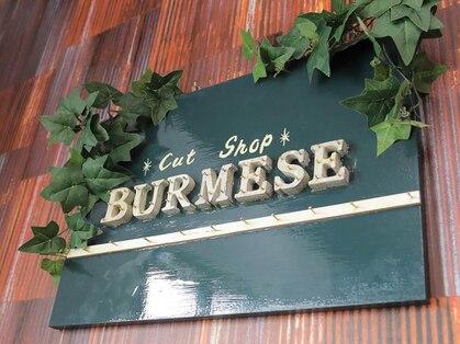カットショップ バーミーズ(CUT SHOP BURMESE)の写真