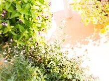 ラ ポワール(la.poire)の雰囲気(緑に包まれた癒し空間。)