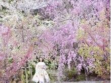 美容室シオン 文化の森ヒルズ店(sion)の雰囲気(シーズンによって変わる景色を楽しめます♪写真は春の外観です。)