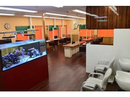 美容室メデューサ都府楼店の写真