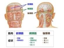 【筋膜リリースヘッドスパとは??】