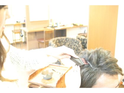 桜そめそめの写真