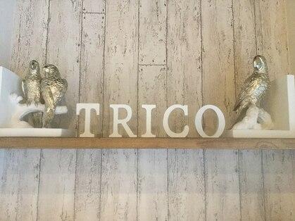 トリコ(trico)