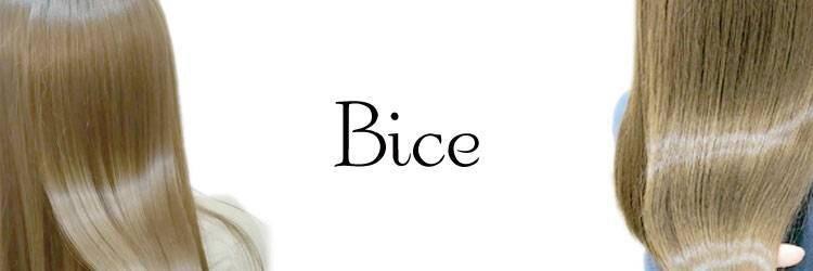 ビーチェ 小岩(Bice)のサロンヘッダー