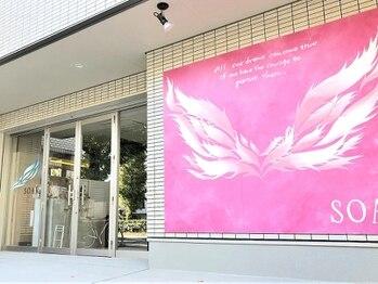 ソア 武蔵小杉(SOAR)の写真/美術館風のアートサロン~人との繋がりを大切に。あなたが好きな作品を店内に展示!【武蔵小杉】