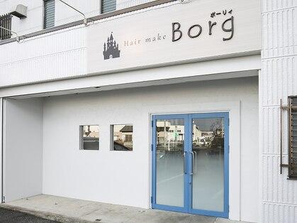 ボーリィ(Borg)の写真