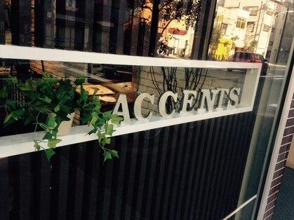 アクセンツ ヘアデザイン(Accents hair design)の写真