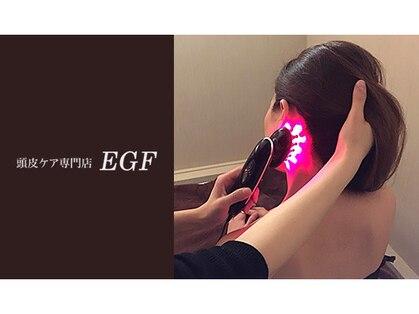 EGFの写真