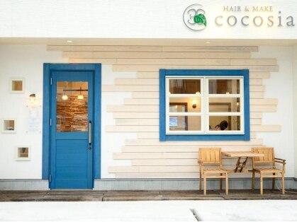 ココシア(cocosia)の写真