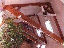 カラリ 健軍店(Colari)の雰囲気(天窓からの優しい光につつまれた空間でリラックスしてキレイな!!)
