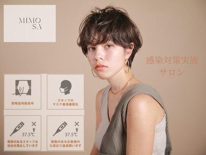 MIMOSA 銀座 【ミモザ】