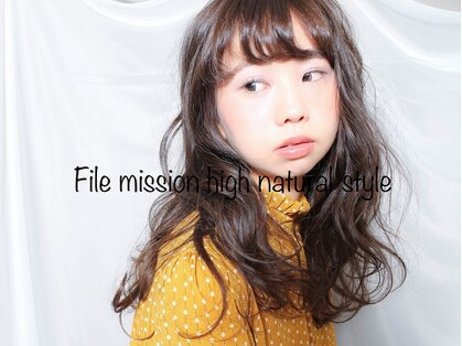フィル ミッション(File mission)の写真