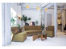 アンテナ デザインプラス 目白店(ANTEnNA design+)の雰囲気(カフェ風の店内はゆったりと落ち着ける雰囲気♪)