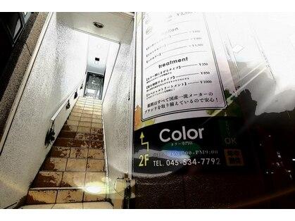 カラー(Color)の写真