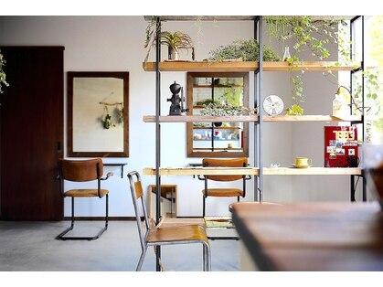 アメイロ ヘアープラスカフェ(ameiro hair+cafe)の写真