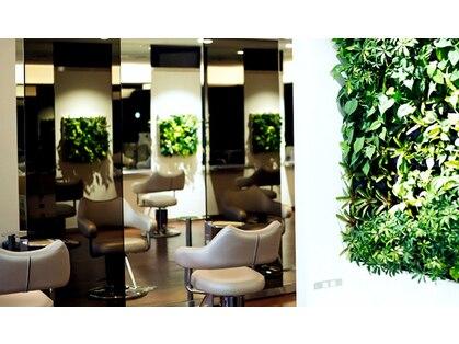 グリーンスタジオ (green STUDIO)の写真