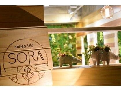 ソラ(SORA)の写真