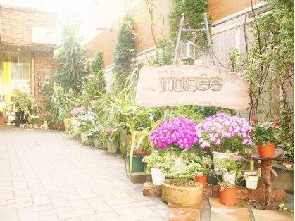 ミューゼ(musee)の写真