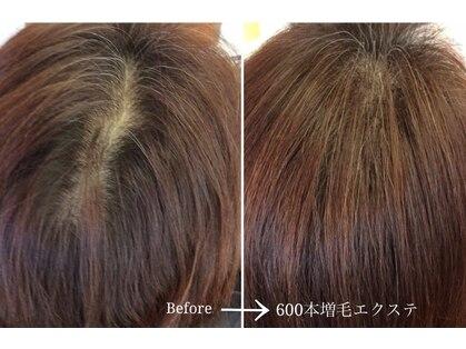 ルートヘアー 湘南茅ヶ崎店(Route hair)の写真