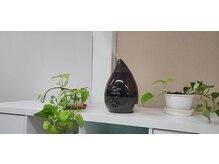 グリーンアップル(GREEN APPLE)の雰囲気(乾燥予防、ソリューションウォーターで空間除菌してます。)