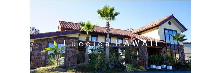 美容室 ルチア ハワイ(Luccica HAWAII)のサロンヘッダー