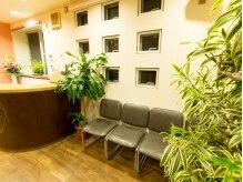 美容室 マキの雰囲気(緑があふれる空間でリラックスできます。)