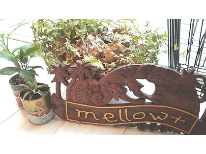 メロウプラス(mellow+)の写真