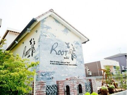 ルートバイエアー(Root by air) 画像