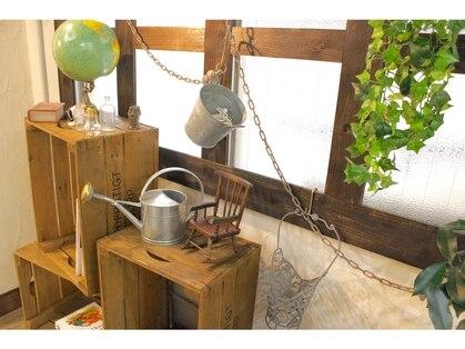 アティック(attic)の写真