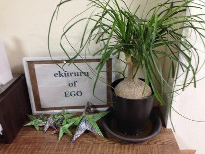 エクルル オブ エゴ ekururu of Egoの写真