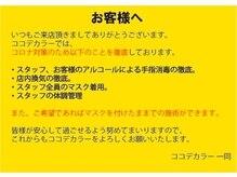 ココデカラー 五泉店(COCO de COLOR)