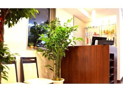 ケースタイル ヘアスタジオ 神保町店(K STYLE HAIR STUDIO)の写真
