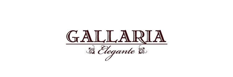ガレリアエレガンテ 植田店(GALLARIA Elegante)のサロンヘッダー