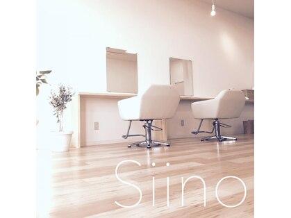 シイノ(Siino)の写真