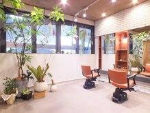 プラン(plan)の雰囲気(店内観葉植物も多く、おちついた雰囲気です。)