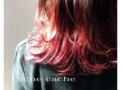 カシュカシュ(cache cache)の写真