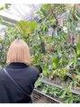 ジーナ オモテサンドウ(XENA)植物にハマってます!とても癒されます♪