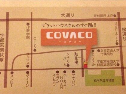 コバコ(COVACO)の写真