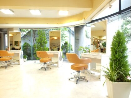 美容室サラサ 白石店の写真