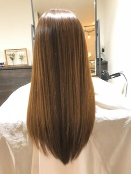 ハコヘアー(HACO HAIR)の写真/リンゴ幹細胞トリ-トメント・酸熱トリ-トメント等オ-ダ-メイドで何種類もご用意◎艶やかな美髪を体感して。