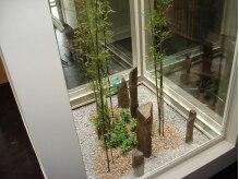 ガーデン ヘアー ワーク(garden hair work)の雰囲気(店内中央部分の吹き抜けには天然の竹がそびえたちます)