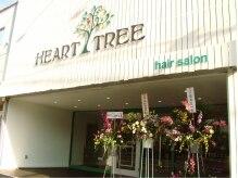ハートツリー(HEART TREE)の雰囲気(ホワイトウッド基調のナチュラルスタイル♪駐車場は店舗裏にあり)