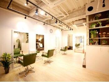 シン(SHIN)の写真/白を基調とした店内はインテリアにこだわりあり!たくさんの観葉植物が飾ってある【SHIN】でリラックス♪