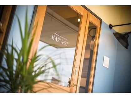 ハーベスト(HARVeST Hair&amazing life)の写真