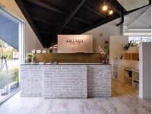 ガレリアエレガンテ 岡崎竜美丘店(GALLARIA Elegante)の雰囲気(【岡崎市】明るい、受付で皆様をお出迎えいたします。)