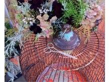 ブリック(brick)の雰囲気(アンティークと植物に囲まれた空間で素敵なヘアスタイルを!!)